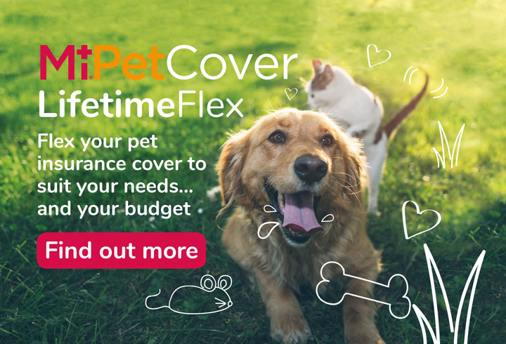 MiPet Cover Lifetime Flex